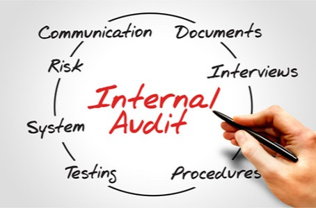 Internal System Audits and The Requirements?