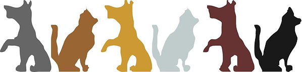 Cat and dog banner.jpg