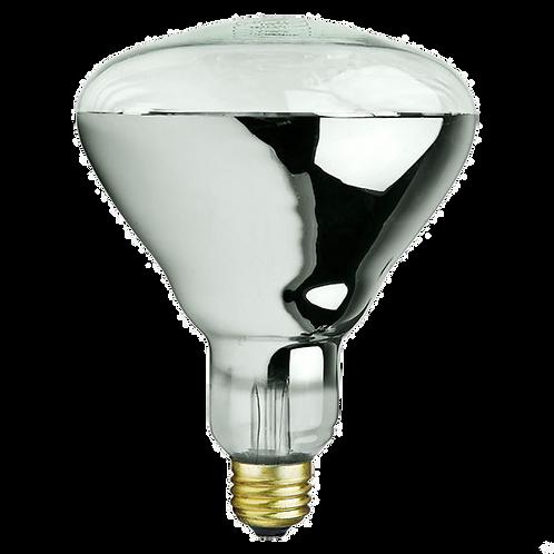 PLT-250R401 Heat  Lamp  Ligth  Bulb