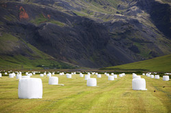 Hay_bales_and_mountainside.jpg