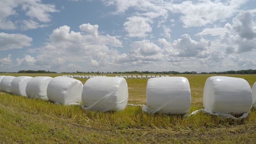 sunfilm wrapped bales.jpg