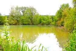 Baie  sauvage des eaux vives