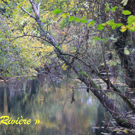 Ruisseau et rivière d' Odysséa