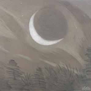25521 - Quarter Moon