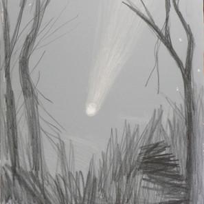 18790 - Shooting Star