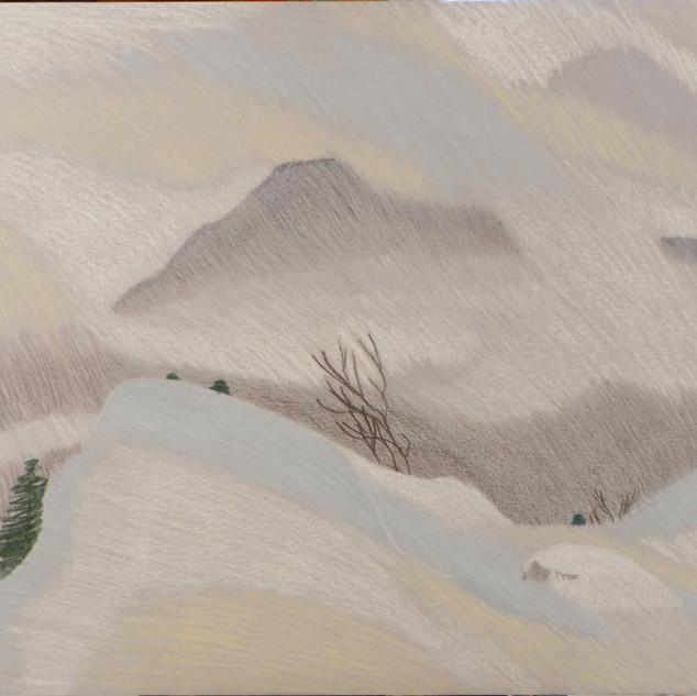 20732 - Mountain Mists