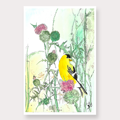 Goldfinch Water-color by Bl'u