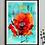 Thumbnail: Red Poppy