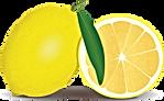 citrus-1296291_1280.png