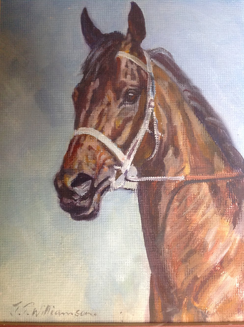 """""""The Sir Tristram Filly"""" by Jackie T Williamson"""