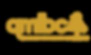 Queenstown Mountain Bike Logo
