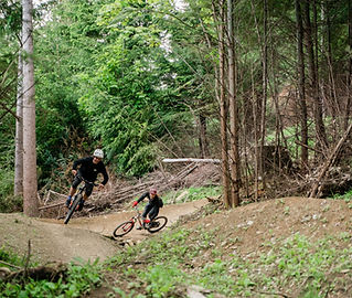 QMTBC McNearly Gnarly Trail queenstown