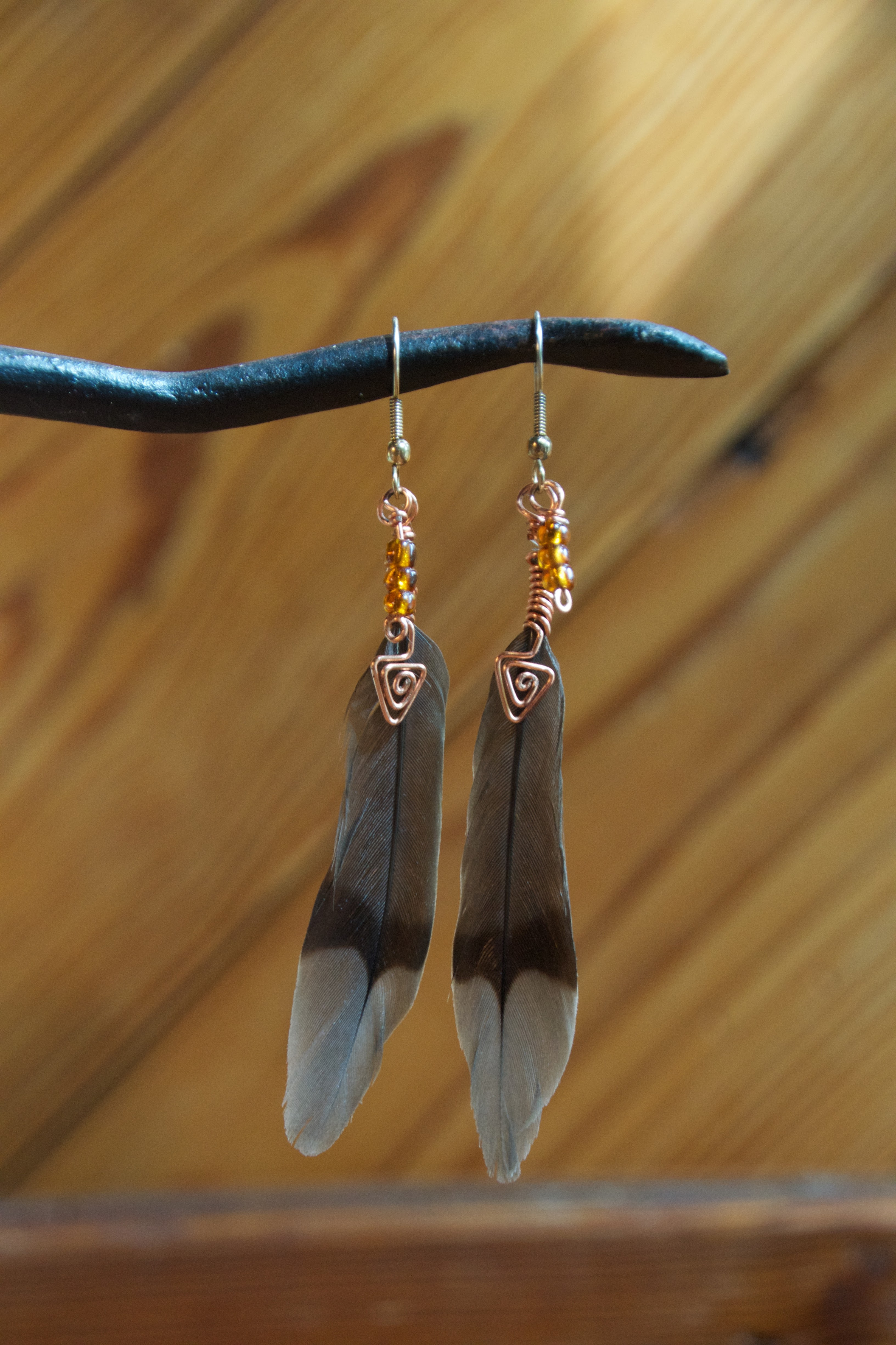 Mockingbird feathers