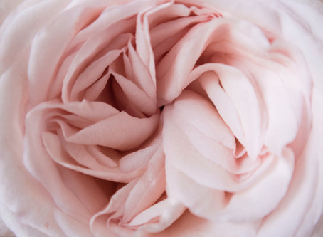 Menstruasjonssyklusens magi
