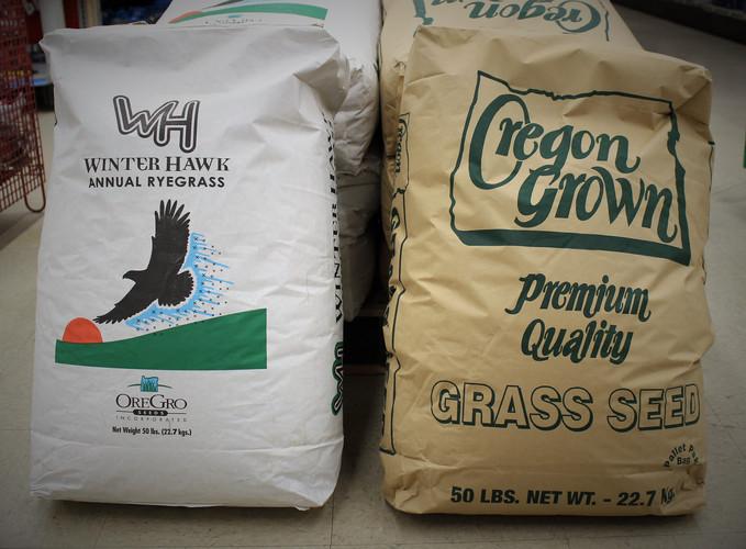 Oregon Grown & Winter Hawk Grass Seed