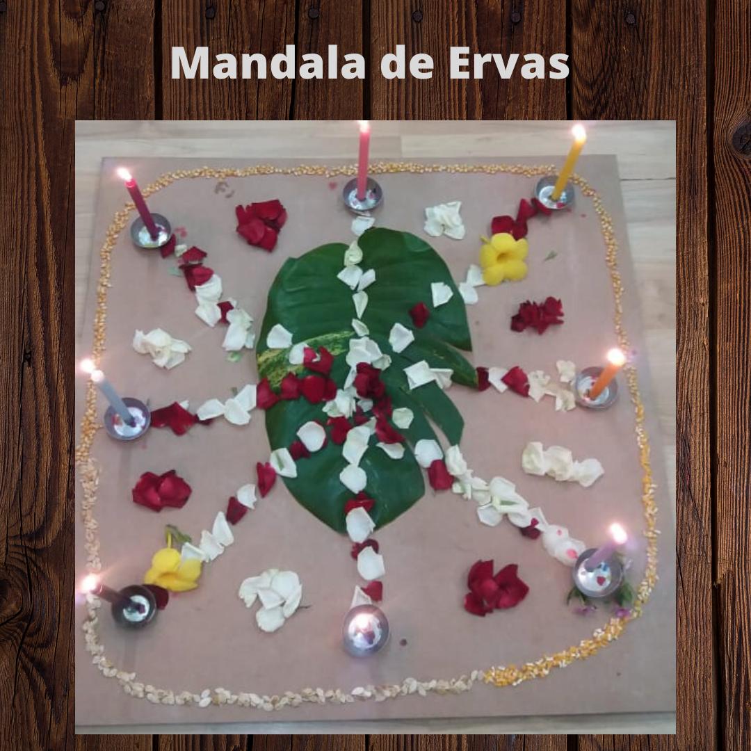 Mandala de Ervas