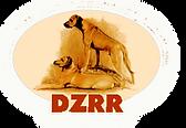DZRR logo.png