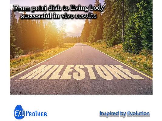 milestone_road_last.jpg