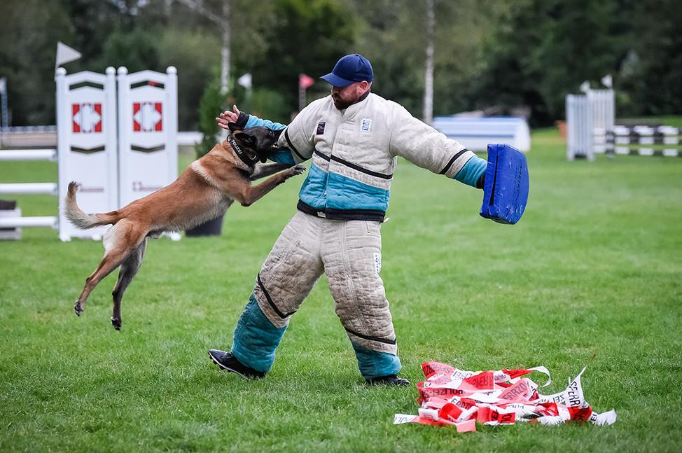 Polizeihunde-56.jpg
