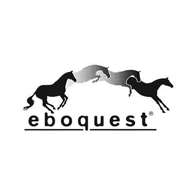 Hardwiese_Eboquest_Logo.jpg