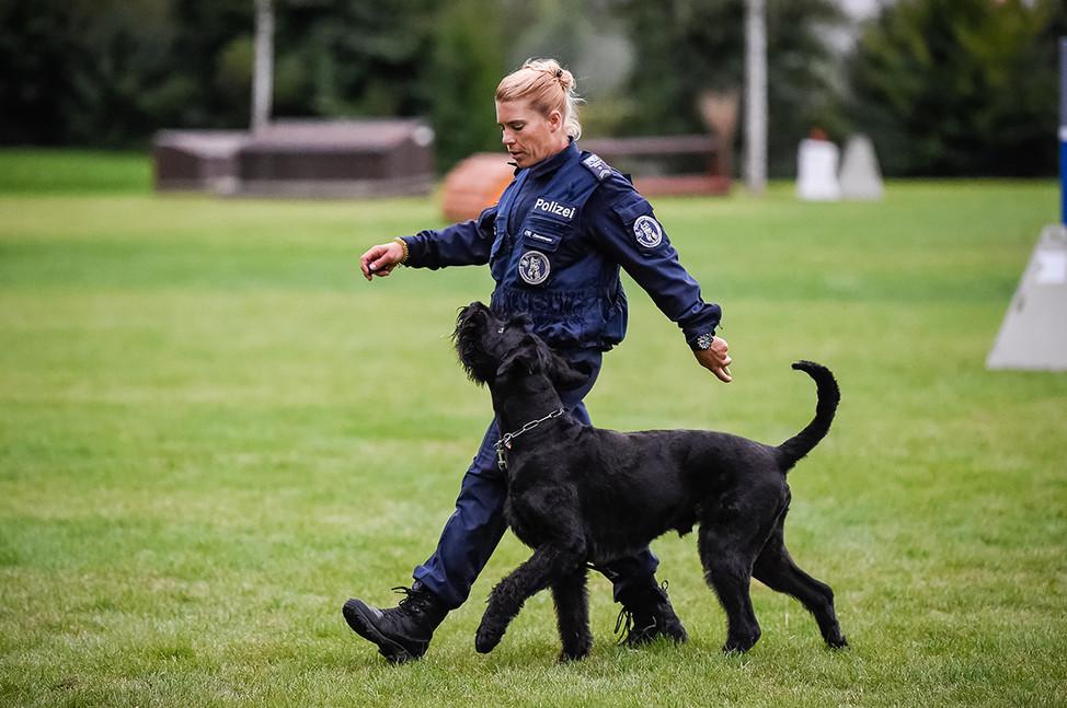 Polizeihunde-46.jpg