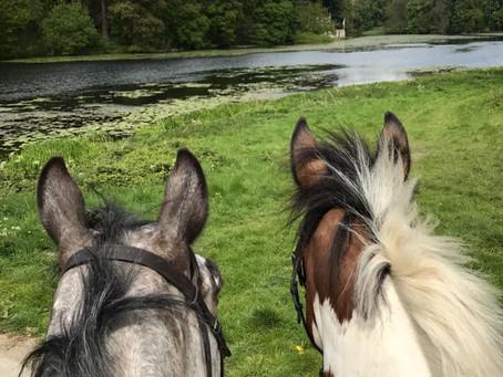 Ride For Rutland
