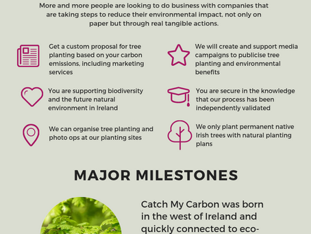 How on earth can planting trees help your business?