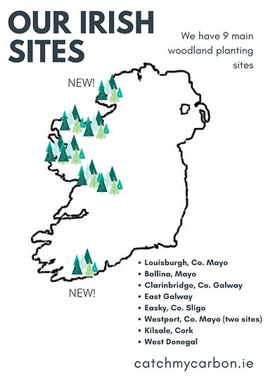 OUR IRISH SITES.jpg