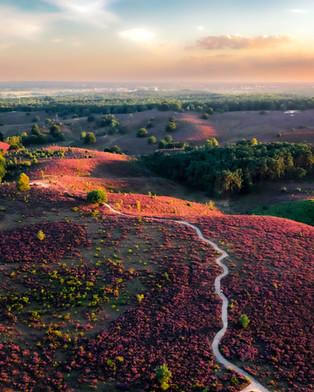 Drone fotografie Heide