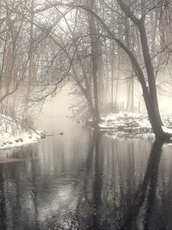 Stream Fog