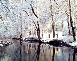Winter Stream I