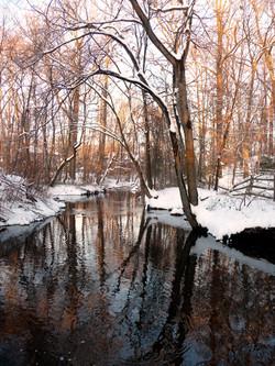 Winter Stream III