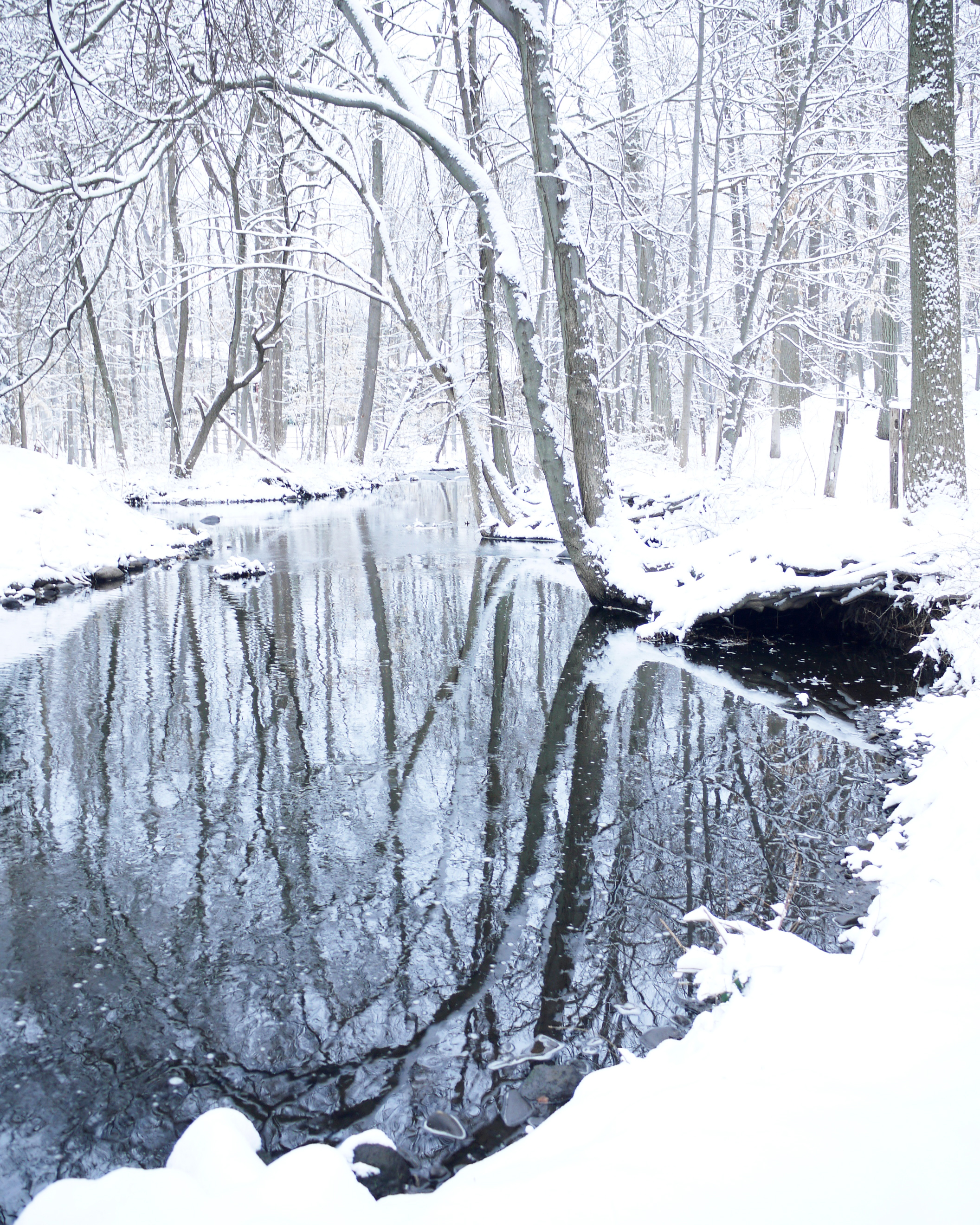 Winter Stream II