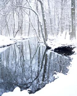 Winter Stream II