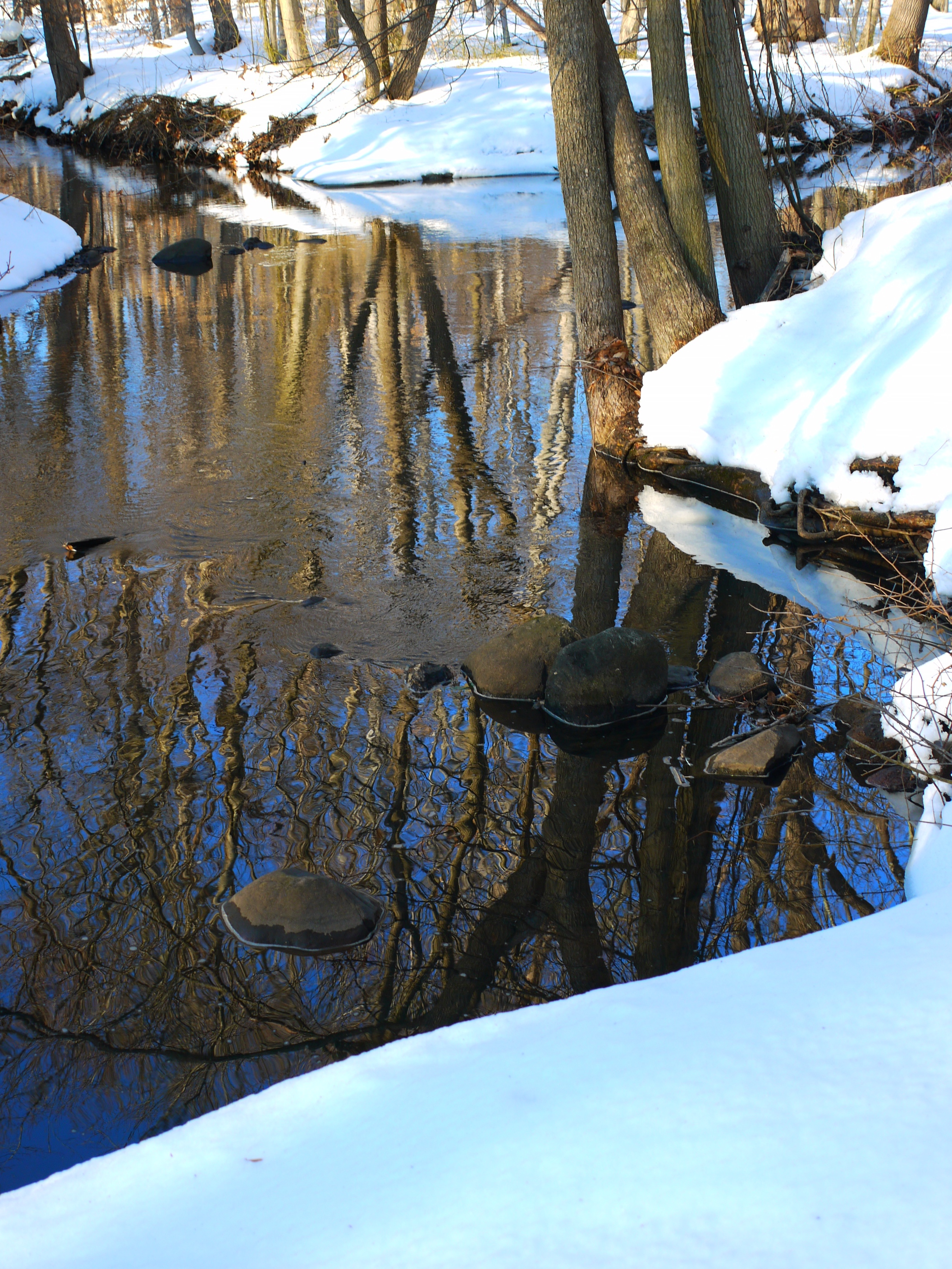 Winter Stream IIII