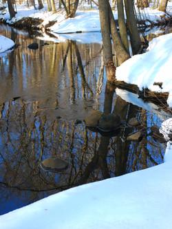 Winter Stream IIII