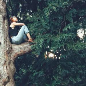 shanti tree