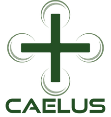 CAELUS-Logo_edited.png