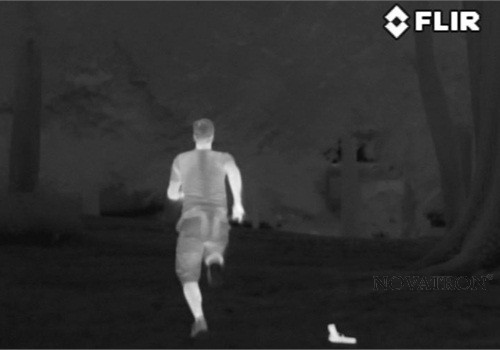 flir-thermal-image-2