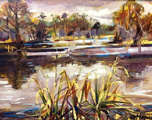 Lake Alice 16 x 20