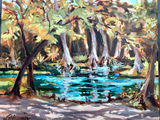 Naked Springs 20 x 16