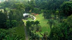 A World Icon: Singapore Botanic Gardens