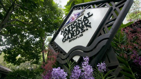 Turner commissions Singapore Botanic Gardens Documentary for World Heritage Channel