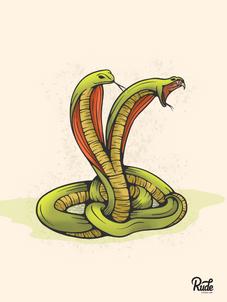 Shady Snakes
