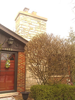 Damm Masonry Chimney Repair Contractor In Wheaton And