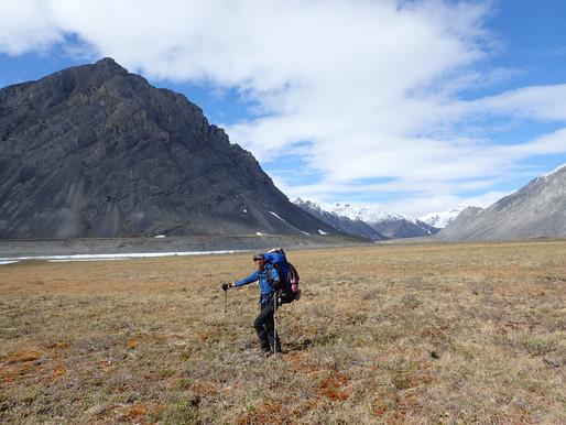 北極圏野生動物保護区へ(2)