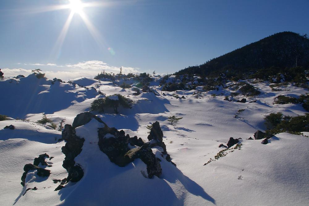 冬の北八ヶ岳坪庭