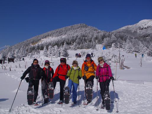 北八ヶ岳・縞枯山スノーシュートレッキング