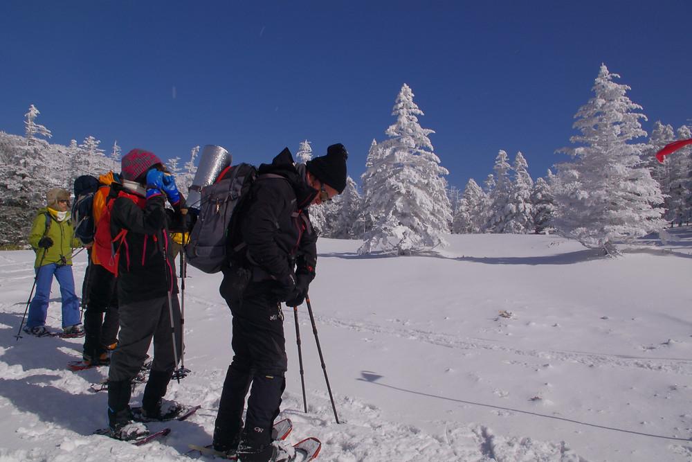 冬の北八ヶ岳/シラビソの樹氷