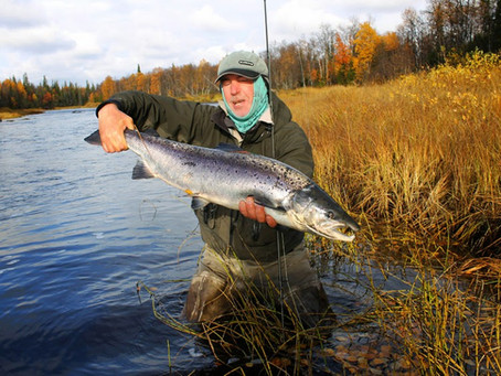 The end of salmon fishing season 2014
